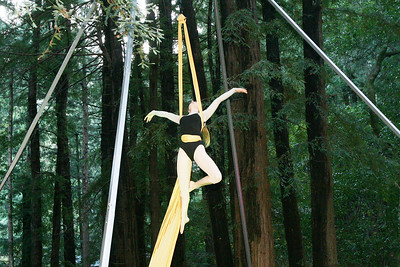 MARIN AERIAL DANCE OLD MILL PARK 0010