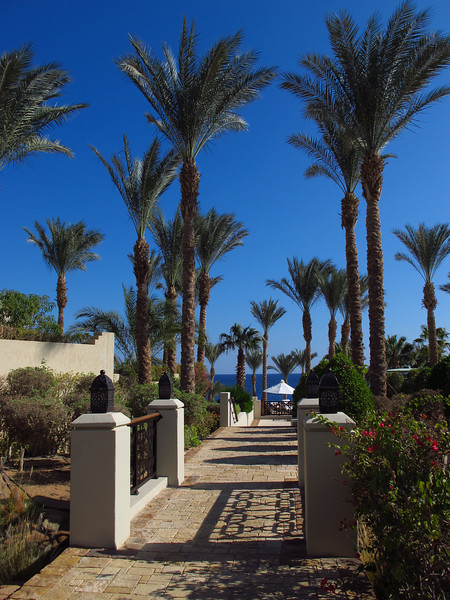 Walking paths are everywhere in the resort.