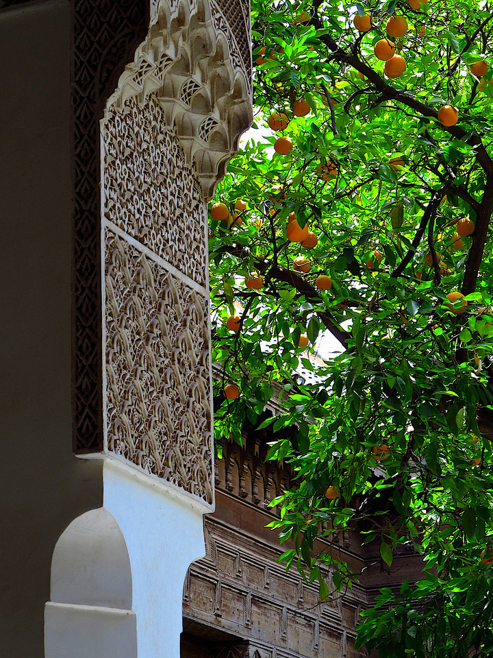An orange tree growing in one of the palace courtyards.
