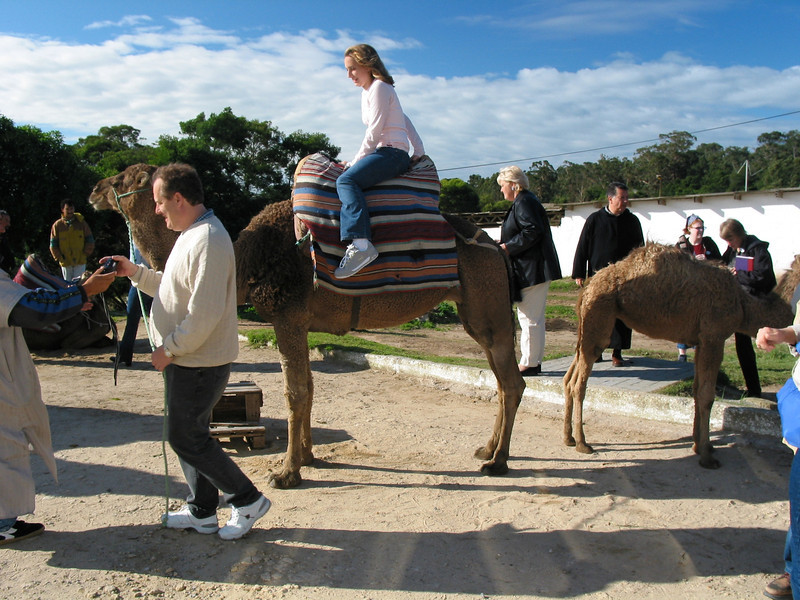 Almost every tour includes the obligatory stop to ride a camel.