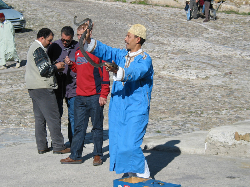 """The old city is usually crammed with tourists, so the local """"snake charmer"""" will perform for a few dollars."""