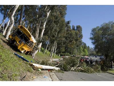Bus crash 140424