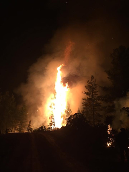 Fires  2015