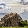 Simba Rock - Serengeti - dramatic clouds-6948