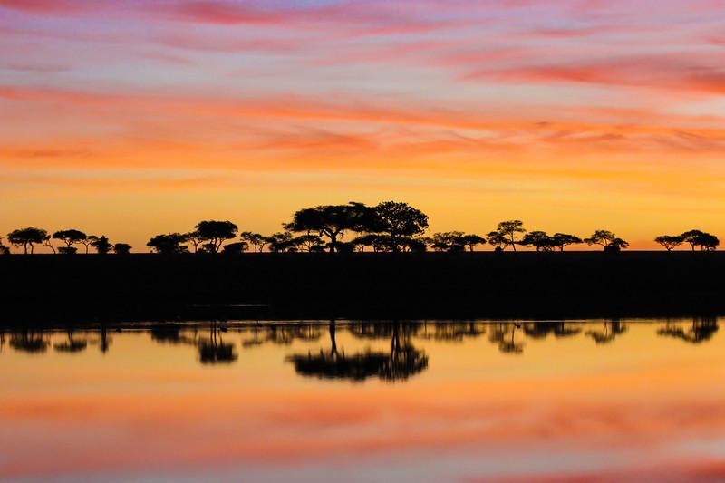 sunrise silhouette - Serengeti-7094