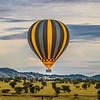 hot air balloon 5 - Serengeti-7815