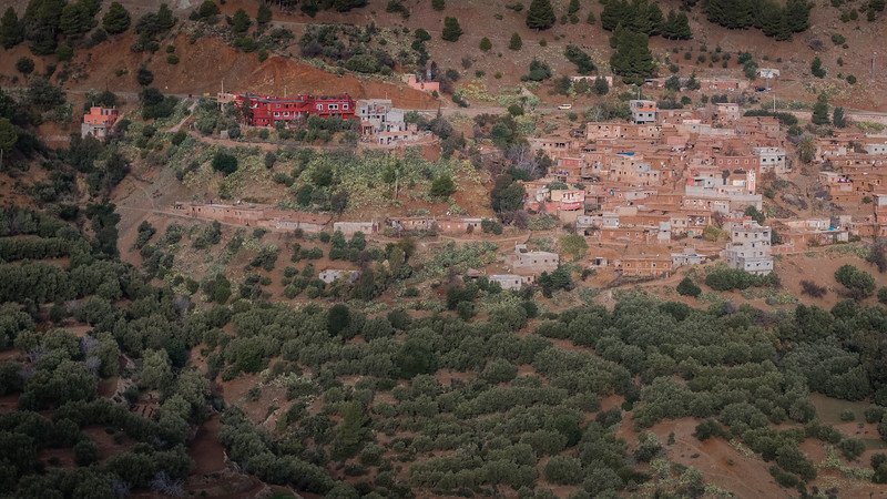 Forêt Tagargoust