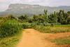 UG 319  View of Wanale Mountain