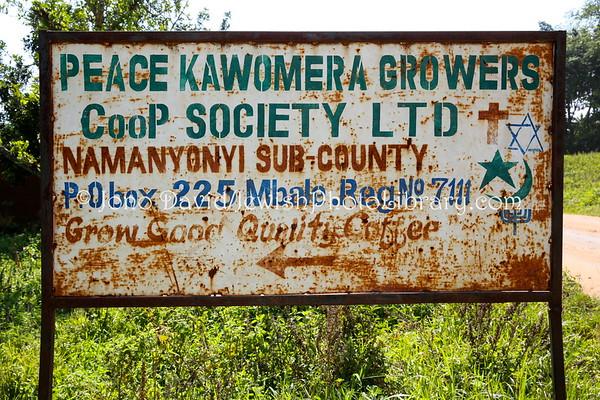 UGANDA, Mbale District, Namanyonyi Sub-country. Peace Kawomera Growers Coop Society. Abayudaya Jews. (8.2013)