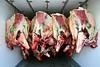 ZA 15673  Trevor's Quality Kosher Meats  Johannesburg, South Africa