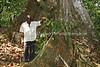CM 130  Moreh Nachman Etele, community leader, on his cocoa farm  Saa, Cameroon