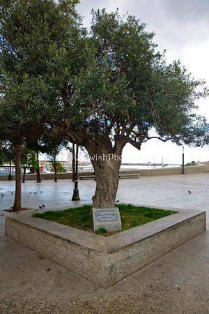 ES 1234  Carlos Chochron memorial  Ceuta, Spain