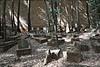 ET 214  Yemenite Jewish Cemetery  Addis Ababa, Ethiopia