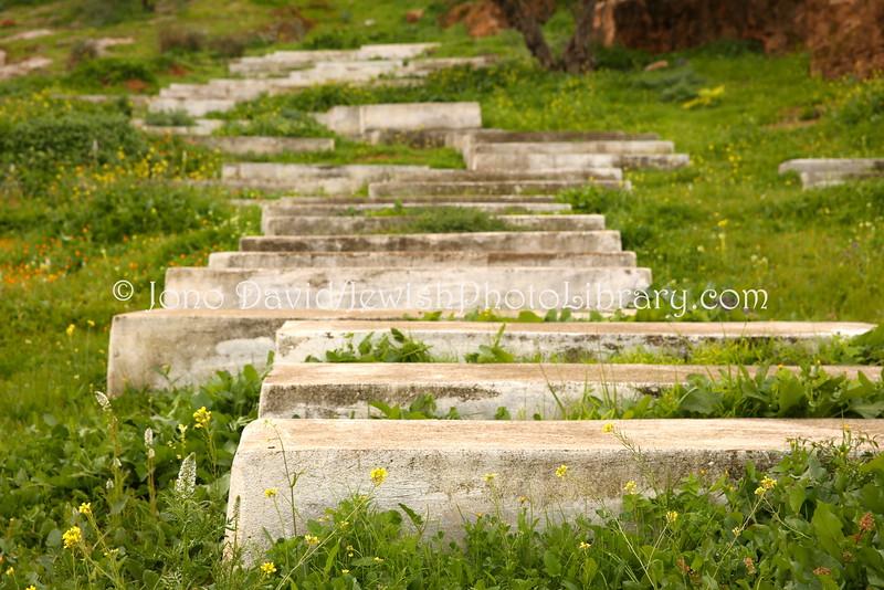 MA 1733  Jewish Cemetery  Bzou, Morocco