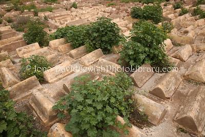 MA 1977  Jewish Cemetery  Marrakesh, Morocco