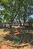 ZA 16230  Old Jewish Cemetery, aka Kimberley Pioneer Cemetery  Kimberley, South Africa