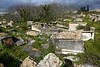 TN 249  Jewish Cemetery Borgel  Tunis, Tunisia