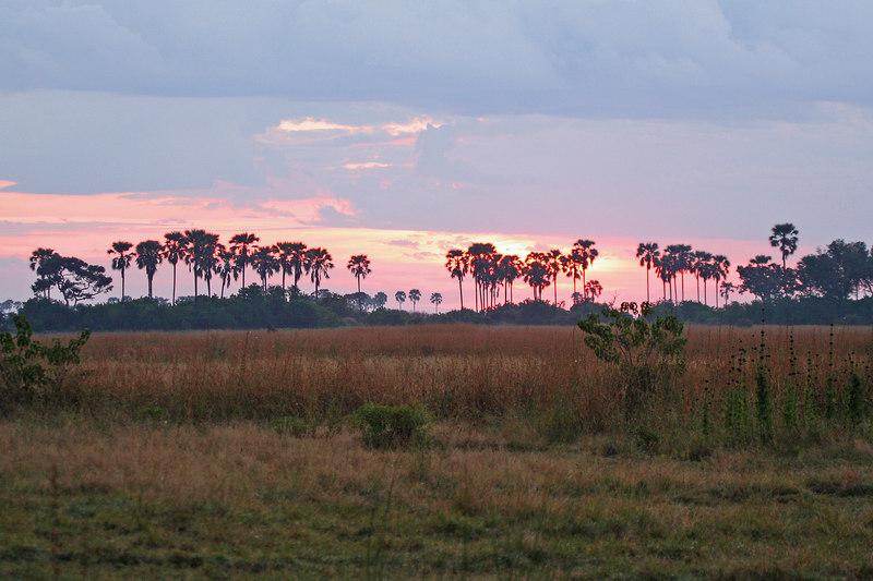 Another Beautiful Botswana Sunset