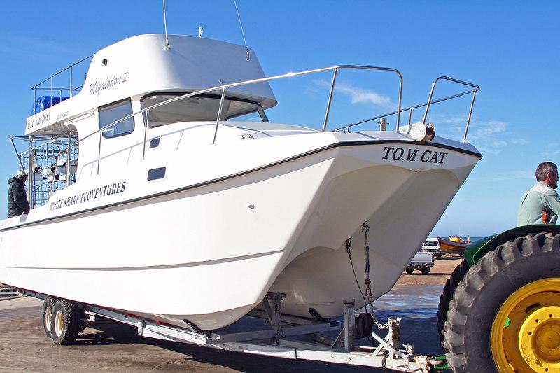 White Shark Boat