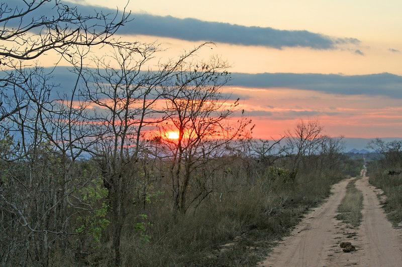 Classic AFRICA sunset