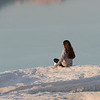 Rear view of woman sitting at seaside, Dead sea, Israel