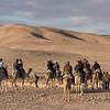 Tourists riding camels in desert, Judean Desert, Dead Sea Region, Israel
