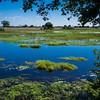 Okavanga Delta, Jao Camp, Botswana
