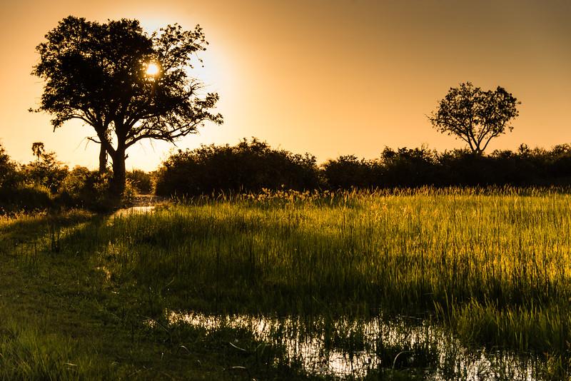Sunset, Okavanga Delta, Jao Camp, Botswana