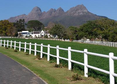 CAPE WINELANDS - SOUTH AFRICA