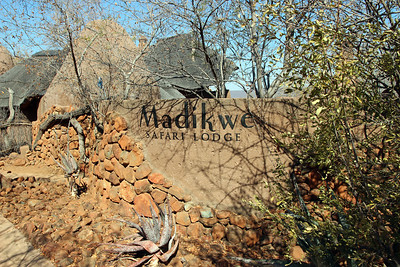 Madikwe Safari Lodge - Dithaba