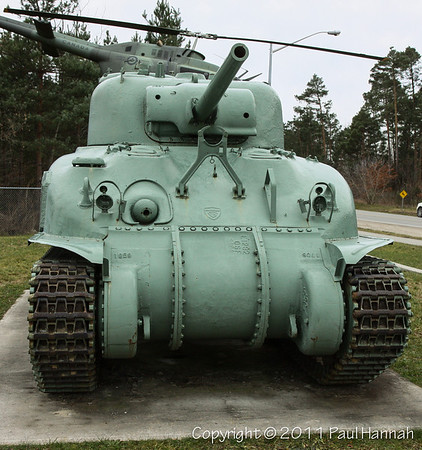 M4A1(75) Grizzly - 4 - 3779