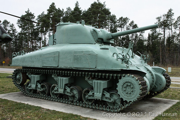 M4A1(75) Grizzly - 1 - 3773