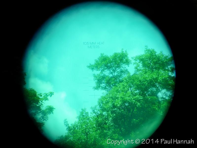 Through The Site - P1150563