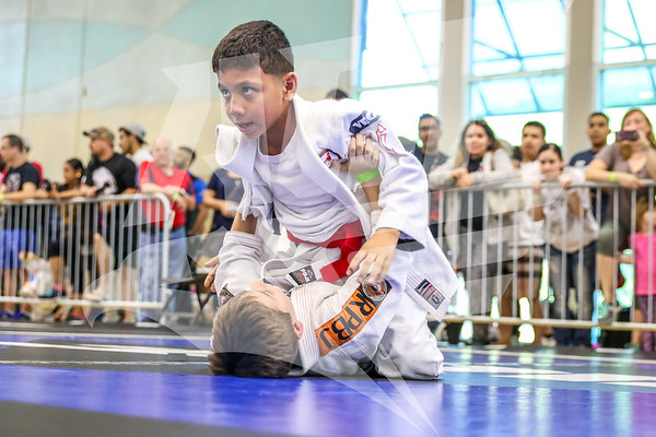 AGF 2017 San Antonio BJJ Championships
