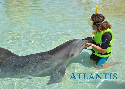 Atlantis-ATLANTIS-Dolphin Encounter Lagoon 1 Pod A-id194655724_withBorder