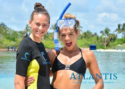 Atlantis-ATLANTIS-Dolphin Encounter Lagoon 1 Pod A-id194655715_withBorder