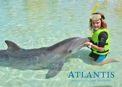 Atlantis-ATLANTIS-Dolphin Encounter Lagoon 1 Pod A-id194655727_withBorder