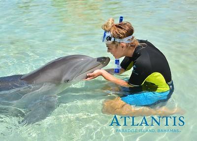 Atlantis-ATLANTIS-Dolphin Encounter Lagoon 1 Pod A-id194655719_withBorder
