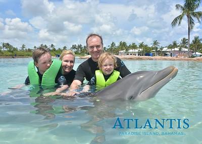 Atlantis-ATLANTIS-Dolphin Encounter Lagoon 1 Pod B-id194655920_withBorder
