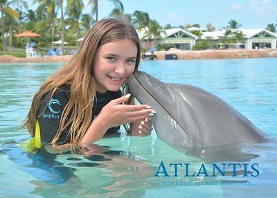 Atlantis-ATLANTIS-Dolphin Encounter Lagoon 3 Pod A-id194655569_withBorder