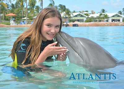 Atlantis-ATLANTIS-Dolphin Encounter Lagoon 3 Pod A-id194655568_withBorder