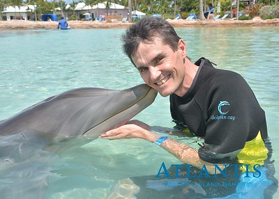 Atlantis-ATLANTIS-Dolphin Encounter Lagoon 1 Pod B-id194655911_withBorder