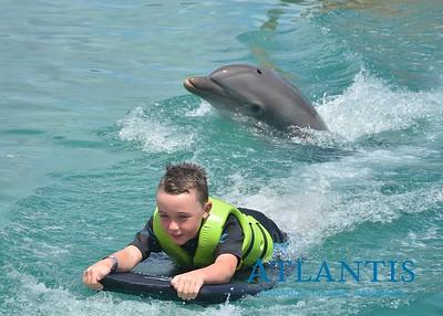 Atlantis-ATLANTIS-Dolphin Encounter Lagoon 1 Pod B-id194655670_withBorder