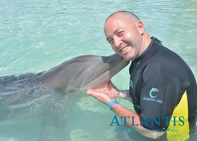 Atlantis-ATLANTIS-Dolphin Encounter Lagoon 1 Pod B-id194655881_withBorder