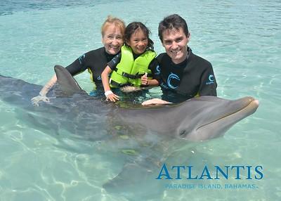 Atlantis-ATLANTIS-Dolphin Encounter Lagoon 1 Pod B-id194655932_withBorder