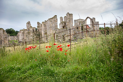 Priory and Poppies