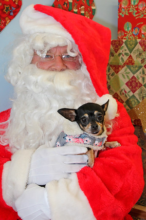 12/15/18 Petco Santa Photos