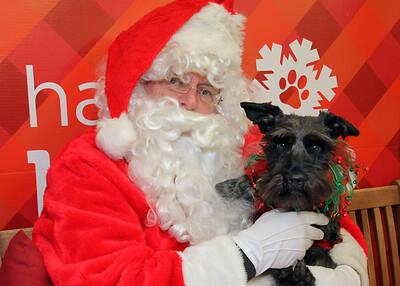 IMG_3513 Santa Jeff black dog