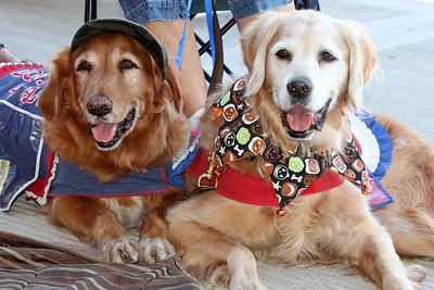 IMG_0464 Jasper and Teddy