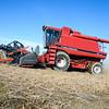 PRANGE FARMS